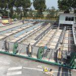 Rodolfi - impianto ricevimento pomodori